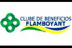 Logo Clube Flamboyant